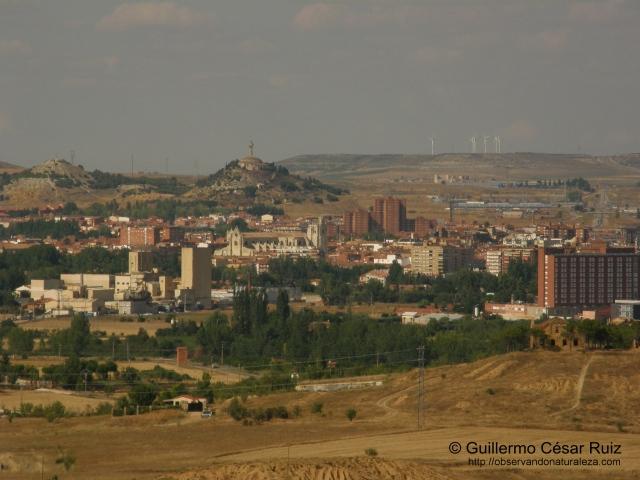 Palencia desde el mirador de la Casa Pequeña