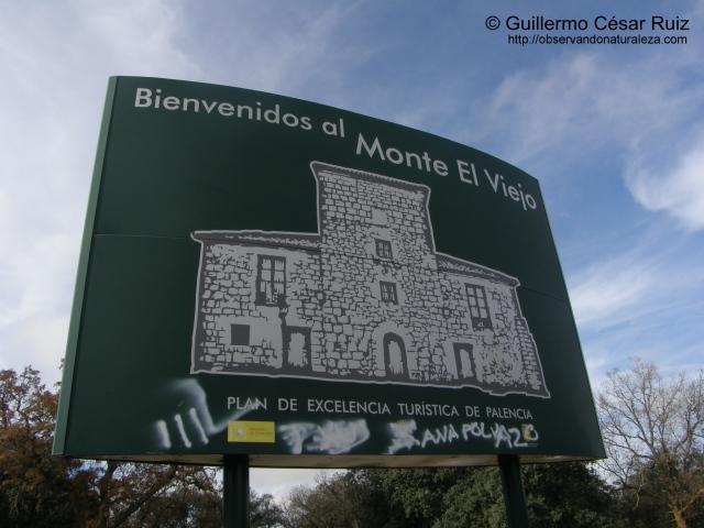 Panel Monte El Viejo
