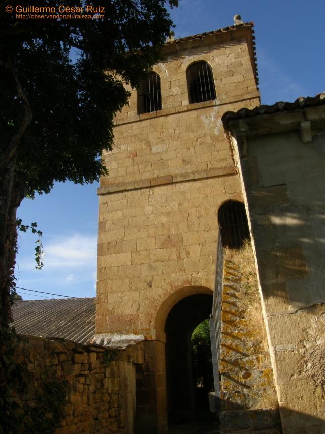 Torre iglesia Sta. Eugenia