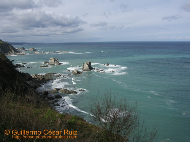 Playa o Ribera Gavieiru o del Silencio
