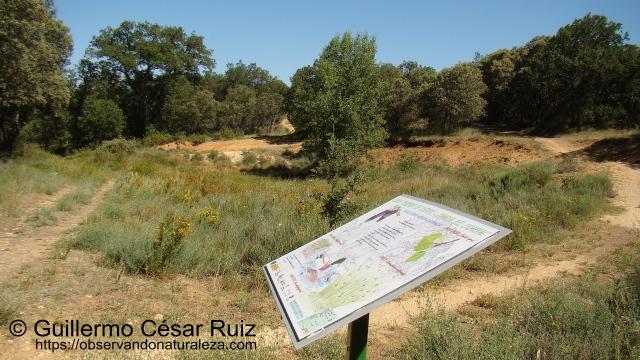 Senda Reserva de los Ciervos-Charca El Cigarral