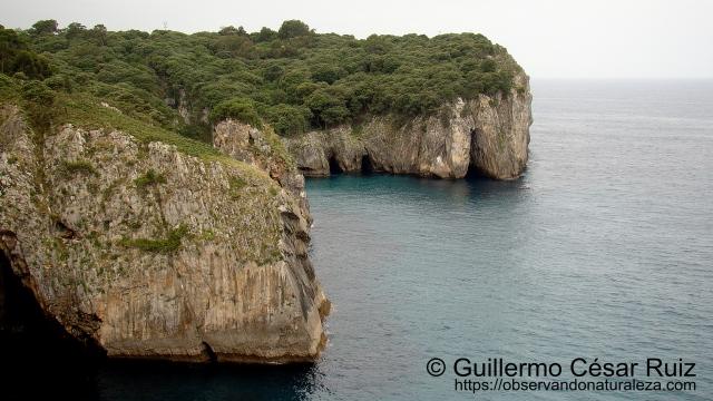 Ensenada de Moral, Cabo de San Emeterio o Santu Medé, Pimiangu, Ribedeva