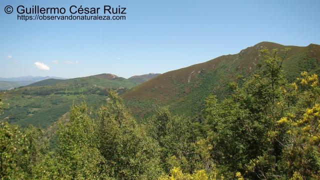 Formigueiros y Alto do Couto, Serra do Courel