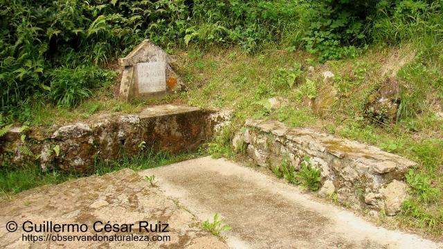 Fuente de San Emeterio, Pimiangu, Ribedeva