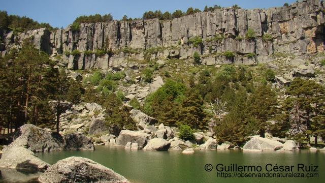 Laguna Negra IV