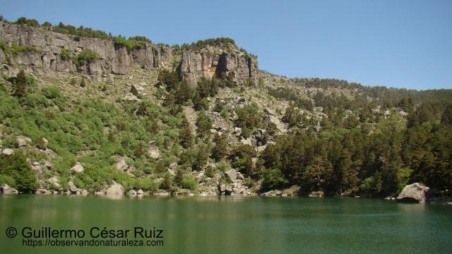 Laguna Negra V