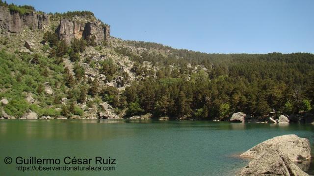 Laguna Negra VI
