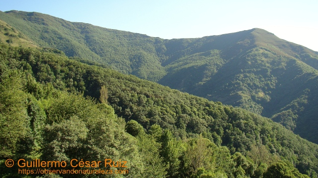 Moreda Maior, Formigueiros, Miradoiro do Polin, Serra do Courel