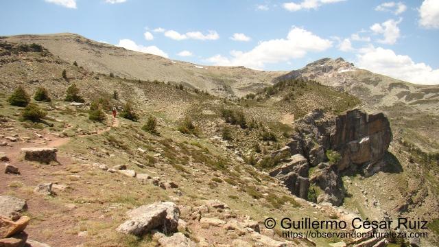 Pico Urbión desde Llanos de la Sierra II