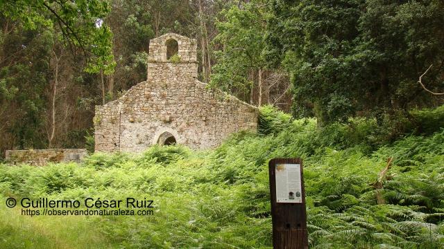 Ruinas Monasterio Santa Maria de Tina, Pimiangu, Ribedeva
