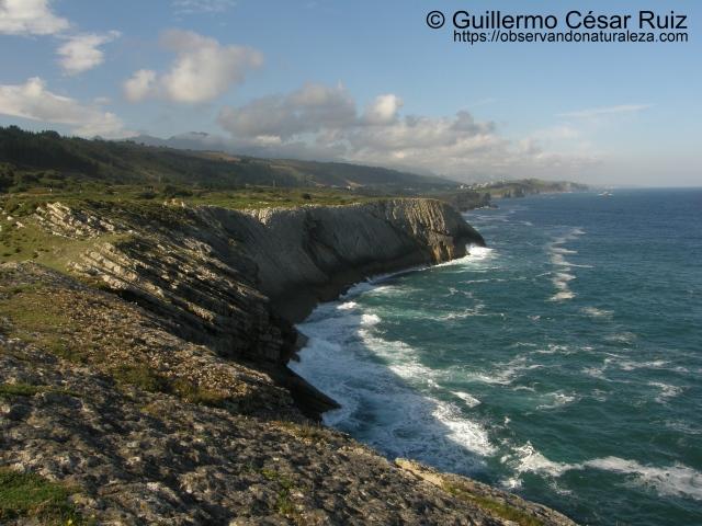 El Paredón o Las Palomas, acantilados de Buelna (Llanes-Asturias)