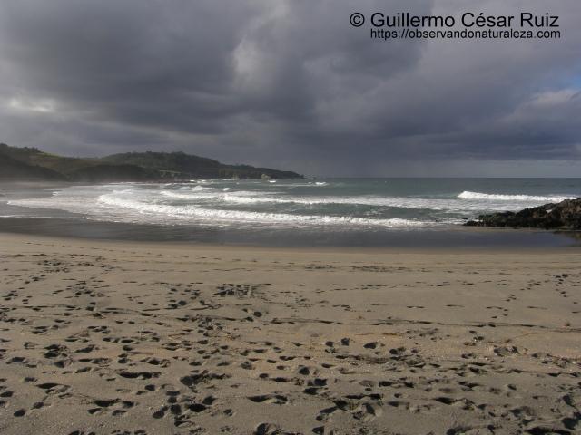 Playa de Frexulfe, Frexulfe (Navia-Asturias)