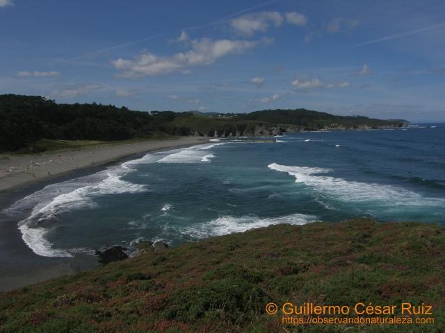 Playa de Frexulfe (Navia-Asturias)