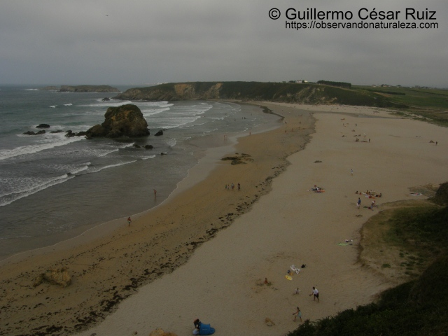 Playa de Penarronda, Castropol (Asturias)