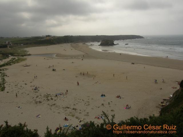 Playa de Penarronda (Tapia-Asturias)