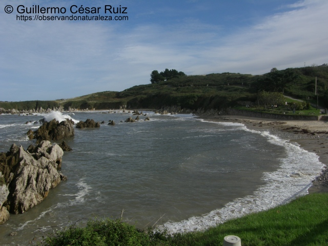 Playa de Toró (Llanes-Asturias)