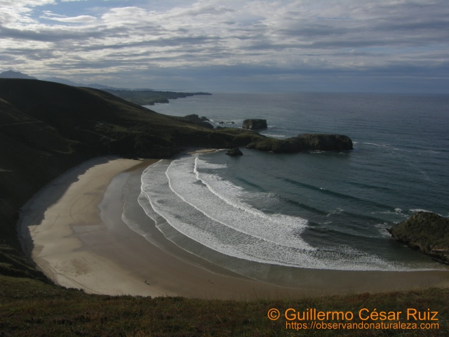 Playa de Torimbia (Llanes-Asturias)