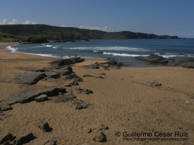 Playa de Verdicio o Tenrero, Verdicio (Gozón-Asturias)
