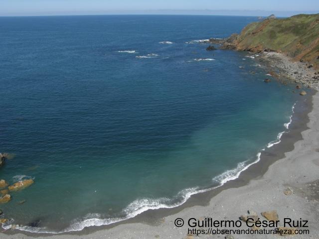 Playa El Cuerno o Les Melleres 3, Verdicio (Gozón-Asturias)