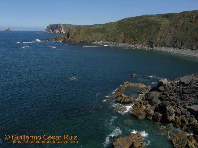 Playa El Cuerno o Les Melleres y Punta de Ferrero, Verdicio (Gozón-Asturias)