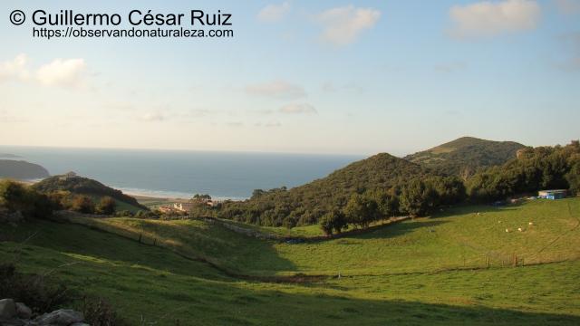 Camino del Polvorin El Helechal. Vistas de Peña Águila, Playa de Berria, Penal El Dueso y Fuerte de Napoleón