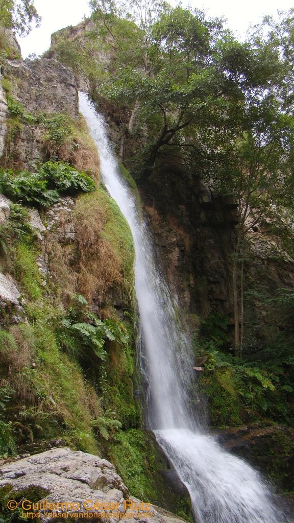 Cascadas de Oneta, La Firbia
