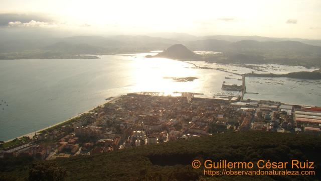 Cumbre del Buciero. Vistas a Santoña y Marismas de Santoña