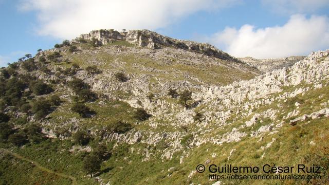 De nuevo en la Hoya Corteguera, cruce de caminos, atrás nos queda el paso enstre Llandesabú y Tueros