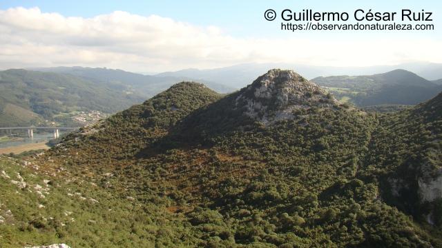 Descenso hacia la Hoya Cobañera para luego ascender al collado. A la izquierda desembocadura del Río Arguera y Ria de Oriñón