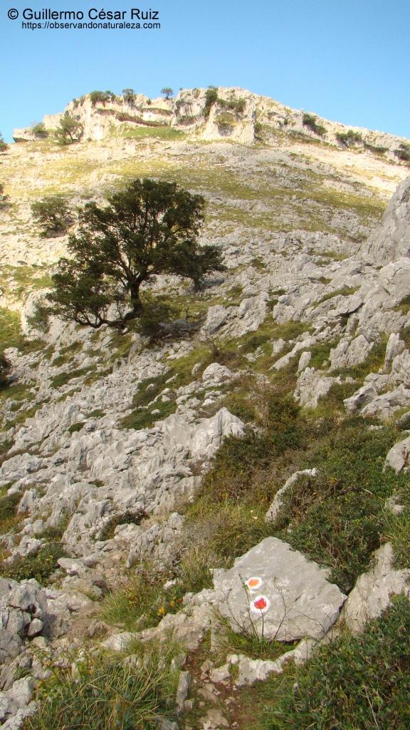 Dirección a tomar ascensión al Collado de Tueros, entre Llandesabú y Tueros