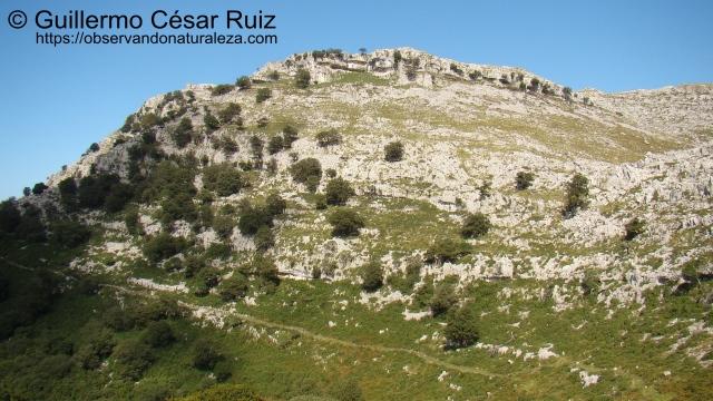 Hoya Corteguera y Llandesabú, sendas Monte Candina