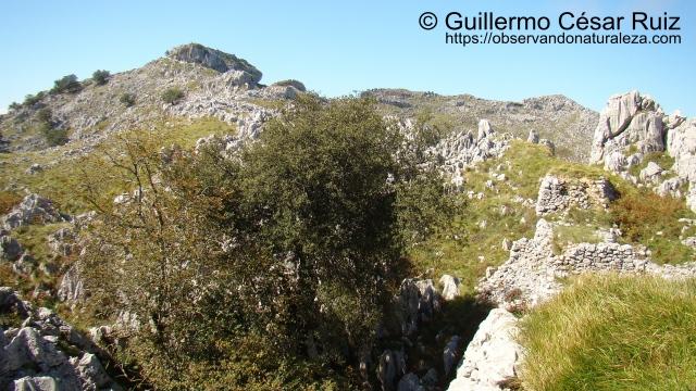Hoya Llandesabú, Monte Candina y Solpico