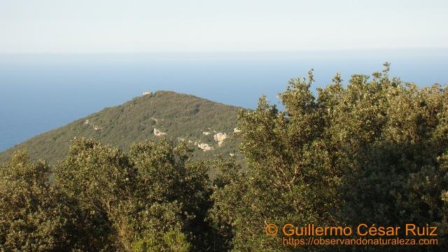 La Atalaya, Monte Buciero, Santoña