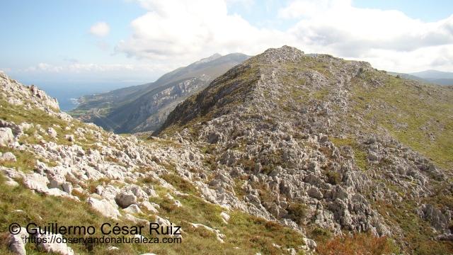 Llana de Tuero. Al fondo Sierra de Hoz con el Alto de Cerredo. A sus pies junto al mar cantábrico Islares y Cerdigo