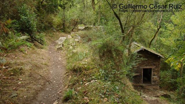 Molín de Ulloa, Cascadas de Oneta, Villayón