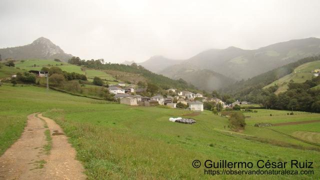 Oneta, Villayón, Asturias