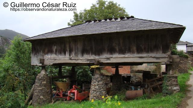 Panera típica en Oneta, Villayón, Asturias