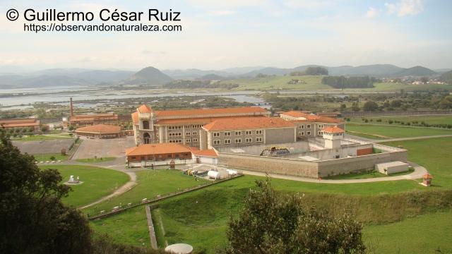 Penal El Dueso, Marismas de Santoña, Montehano, Argoños