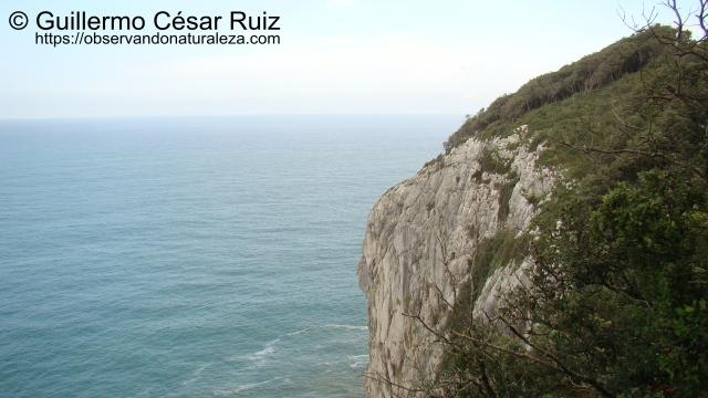 Punta del Águila, Monte Buciero, Santoña