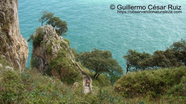 Punta del Caballo, Monte Buciero, Santoña