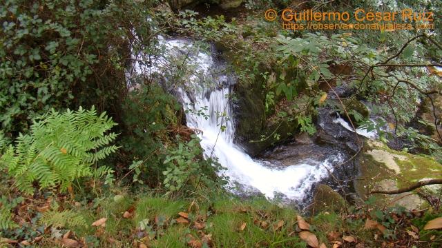 Salto de agua río Oneta, Villayón