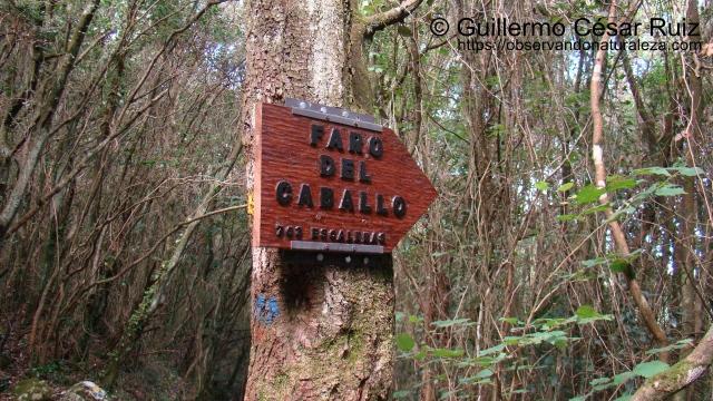 Señalización en Cuatro Caminos desvío hacia el Faro del Caballo, Monte Buciero, Santoña