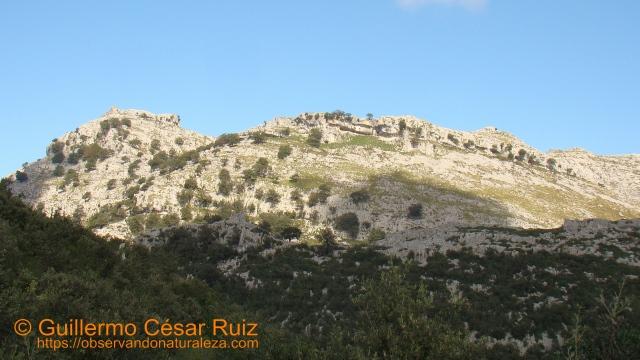 Llandesabú, Tueros y Hoya Cobañera, sendas Monte Candina