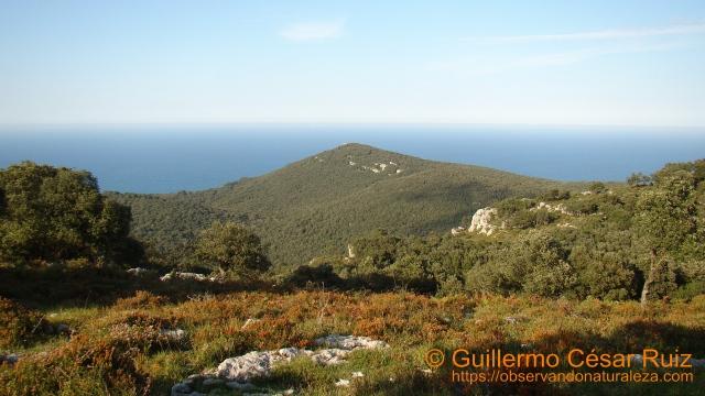 Vista de La Atalaya, Monte Buciero, Santoña