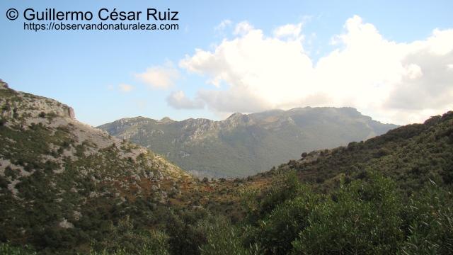 Vista atrás a la Sierra de Hoz y Alto de Cerredo, sendas Monte Candina