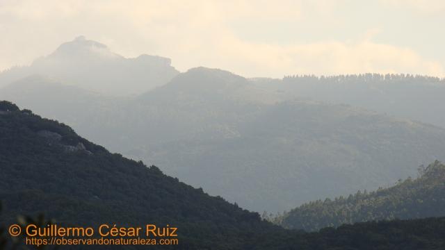 Vistas al Alto de Guriezo al atardecer desde el collado de Cobañera
