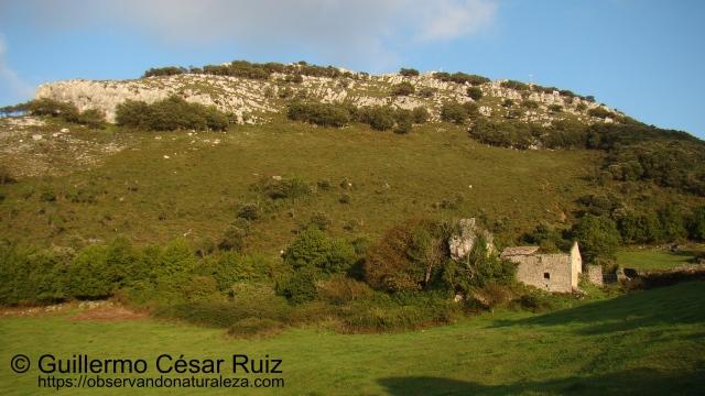 Vistas atrás hacia las culminaciones del Buciero, Santoña