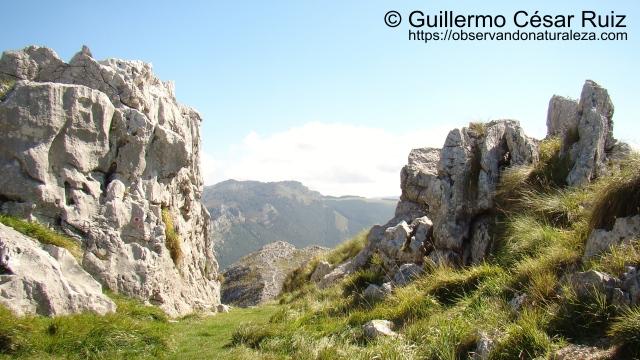 Vistas atrás, cuarto collado, al fondo Sierra de Hoz y Alto de Cerredo