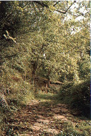 Xerra Peña Collada (camin y cabaña en Gromaloteya)