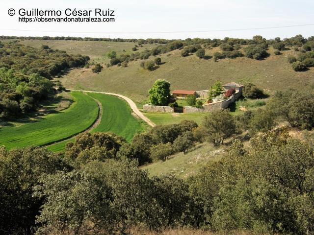Caserío del Colmenar de la Hiedra, Valle de San Juan
